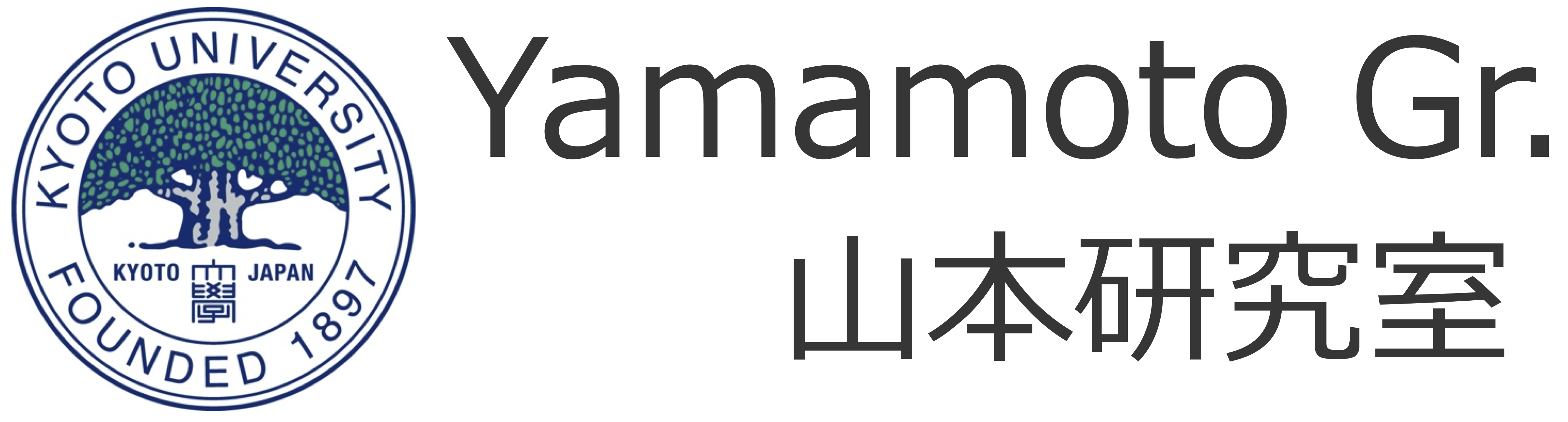 Yamamoto Gr.